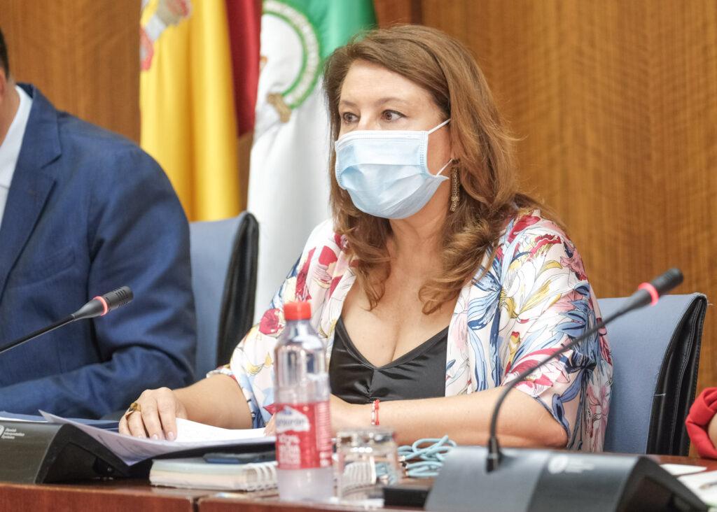 Carmen Crespo comision parlamentaria